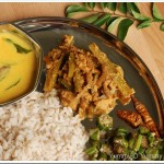 Unakka Chemmeen – Padavalanga Curry / Dried Prawn and Snake Gourd Curry