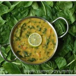 Dal Palak / Spinach and lentil curry