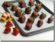 Choco covered strawberries
