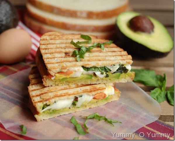 Avocado, egg and mozzarella sandwich1